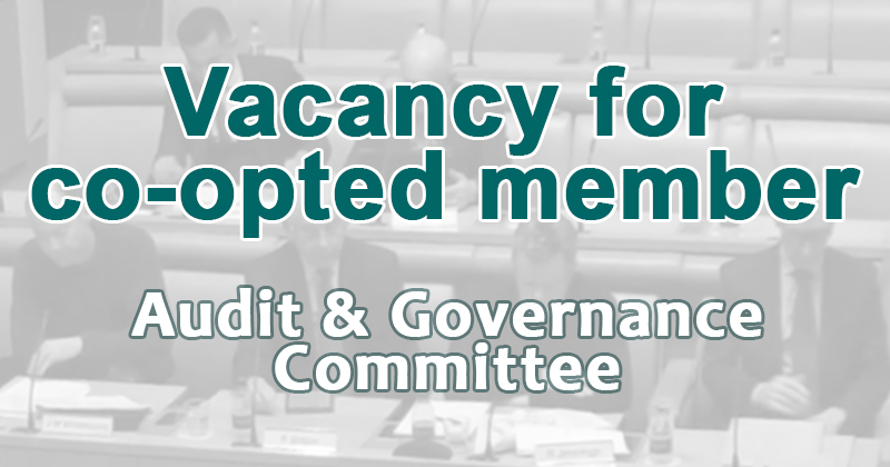 Vacancy for co-opted member - audit and governance committee