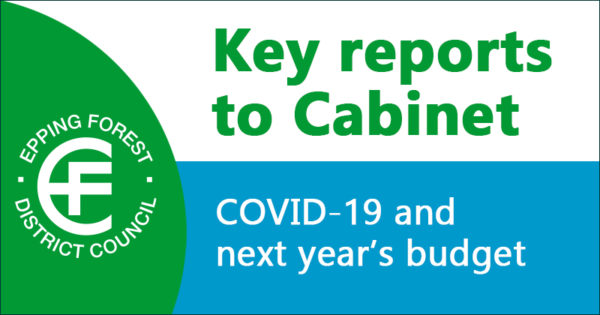 Key reports to Cabinet - COVID-19 and next year's budget