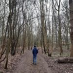 A walk in Epping Forest