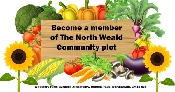 Become a member of the North Weald community plot