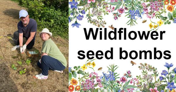 Wildflower seed bombs