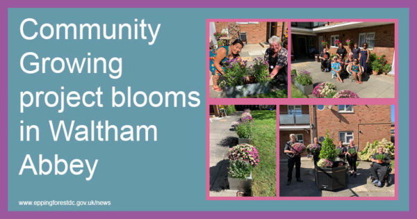 Community growing project blooms in Waltham Abbey
