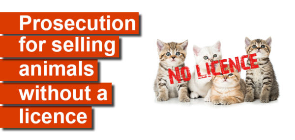 Prosecution for selling animals without a licence